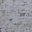 Old Grungy Wall Background Texture — Stock Photo #13841039