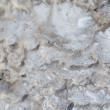 Geological Organic Texture — Stock Photo