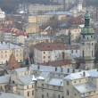 Stockfoto: Lviv city