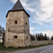 Kryvche tower - Stock Photo