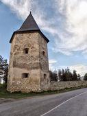 Kryvche tower — Stock Photo