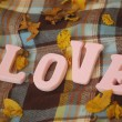 Royalty-Free Stock Photo: Letters L, O, V, E on the blanket in the yellow autumn park