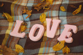 Letters L, O, V, E on the blanket in the yellow autumn park — Stock Photo