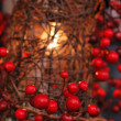 Foto de Stock  : Red Christmas berries