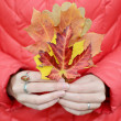 Autumn leaves in hands on red background — Lizenzfreies Foto