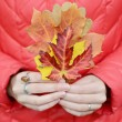 Autumn leaves in hands on red background — Stock Photo