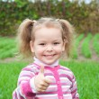 Cute little girl on the meadow — Stock Photo #31782455