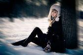 Winter beauty — Stock Photo