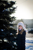 Near a decorative fir-tree in the city. — Stockfoto