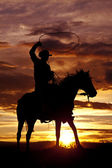 Cowboy swinging rope on horse side angle — Stock Photo