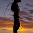 Woman with rope silhouette — Stock Photo #13589641