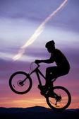 Pneumatico anteriore di sagoma bici fino — Foto Stock