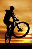 Bike silhouette popping up front tire — Stock Photo