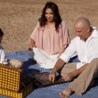 Family picnic checkers — Stock Photo #29584309