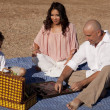 Family picnic checkers — Stock Photo