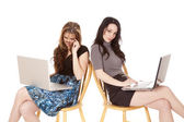 Two women laptops looking — Stock Photo