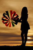 Beach ball silhouette look away — Stockfoto