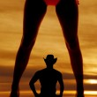 Silhouette woman legs bikini front — Stock Photo #35057907