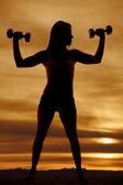 シルエット女性フィットネス重量フレックスします。 — ストック写真