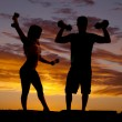 Stock Photo: Silhouette couple with weights flex
