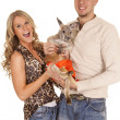Couple with kangaroo — Stock Photo