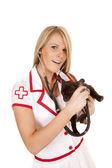 Nurse with small dog hold stethoscope smile — Stock Photo