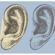 Human ear in engraved style — Stok Vektör
