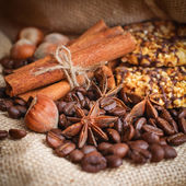 Composition of cinnamon sticks, coffee beans, anise, hazelnuts a — Stock Photo
