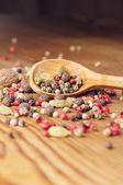 Different pepper seeds and cardamom in the wooden spoon — Stock Photo