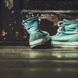 Sneakers — Stock Photo #39631781