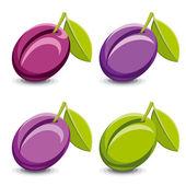 Vector plums — Stock Vector