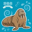 Walrus — Stock Vector #28679369