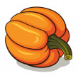 Ripe Pumpkin — Stock Vector