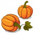 Ripe Pumpkins — Stock Vector
