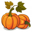 Pumpkins — Stock vektor