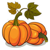 Pumpkins — Vetorial Stock