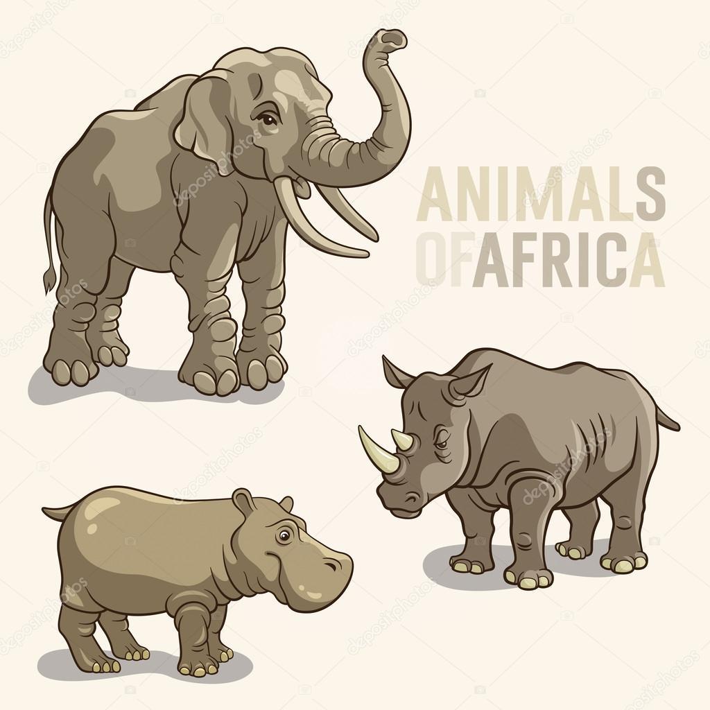 非洲动物 — 图库矢量图像08