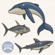 Sea Animals set 2 — Stock Vector