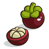 Purple Mangosteen — Stock Vector