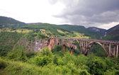 Pont de tara, monténégro. — Photo