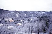 Winter on forest hills (Chezh Republic). — Photo