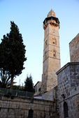 Tower of David (Jerusalem)in the evening — Stock Photo