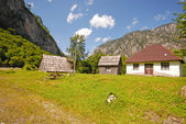 Summer rural landscape — Stock Photo