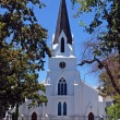 Protestant church in Stellenbosh(South Africa) — Stok fotoğraf