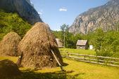 Mountain village and haystacks (Montenegro) — Stock Photo