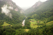 Tara river canyon (Montenegro ) — Stockfoto