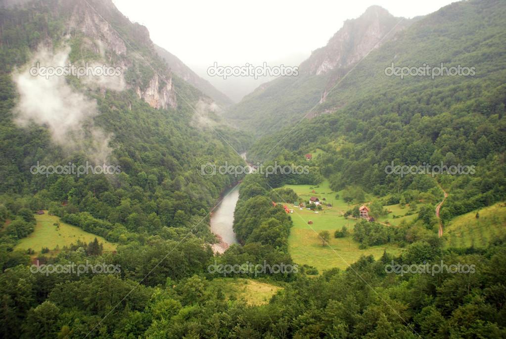 与塔拉河峡谷在黑山山脉的壮丽景色