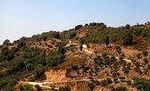 Rural greek landscape on the hills, Crete, Greece — Stock Photo