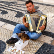 Musician with small cute dog play accordion(Lisbon,Portugal) — Stock Photo