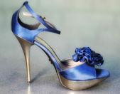 ファッション靴 — ストック写真